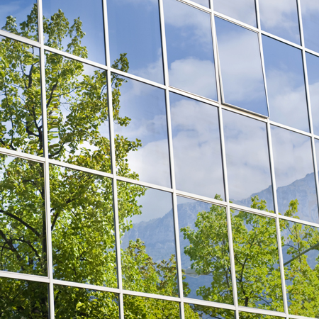 Green Business Reflections